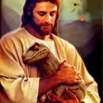 Evolución y Creacionismo