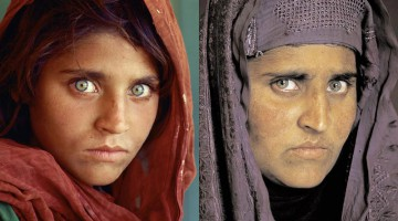 Sharbat Gula2