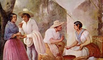 Castañas - Chiapas