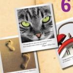 Número 6 de Entropía, primer aniversario y concurso de relatos con premios anticrisis
