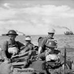Cocodrilos y buitres exterminaron un batallón de japoneses