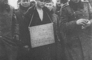 Zoya cartel