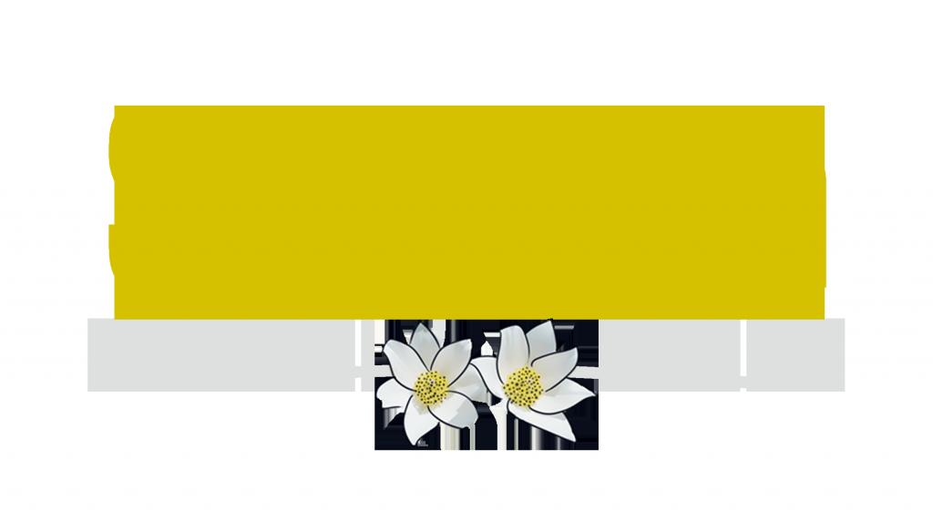 Son de Aragón