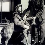 Bing el día que fue condecorada junto a su dueña Betty Fetch