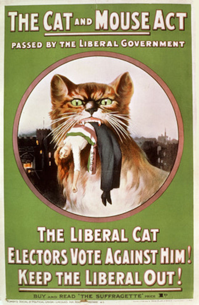 Gato se come a una miembro de Women's Social and Political Union (WSPU)
