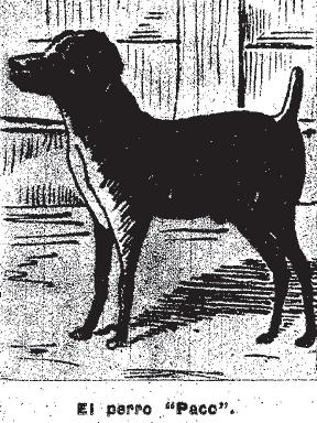 El perro Paco