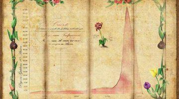 Evolución del precio de los tulipanes en la década de 1630 en Holanda